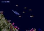 Ecco the Dolphin Megadrive 28