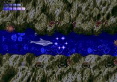 Ecco the Dolphin Megadrive 55