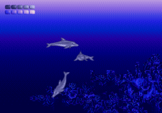 Ecco the Dolphin Megadrive 77