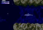 Ecco the Dolphin Megadrive 81