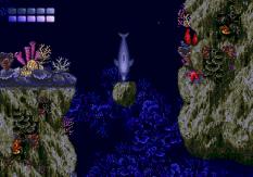 Ecco the Dolphin Megadrive 84