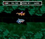 EVO - Search for Eden SNES 029