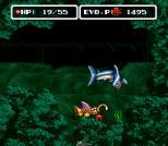 EVO - Search for Eden SNES 030