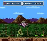 EVO - Search for Eden SNES 091