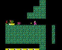 Exile BBC Micro 29