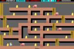 Lode Runner Arcade 24