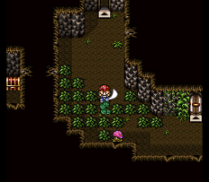 Lufia 2 - Rise of the Sinistrals SNES 022