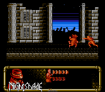 Nightshade NES 29