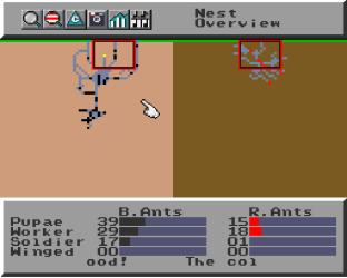 Sim Ant SNES 42
