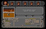 Amberstar Atari ST 17