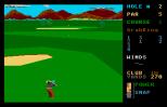 Leaderboard Atari ST 15