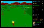 Leaderboard Atari ST 17