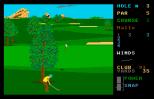 Leaderboard Atari ST 37