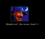 Solstice NES 04