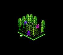 Solstice NES 47