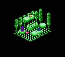 Solstice NES 48
