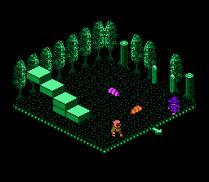 Solstice NES 49