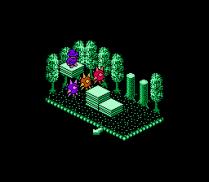 Solstice NES 50