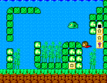 Alex Kidd in Miracle World SMS 29