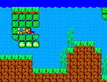 Alex Kidd in Miracle World SMS 48