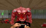 Doom PC 55