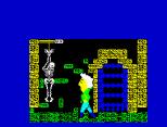 Flunky ZX Spectrum 14