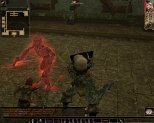 Neverwinter Nights PC 124