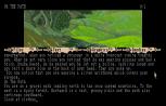 The Pawn Atari ST 02