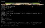 The Pawn Atari ST 07