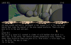 The Pawn Atari ST 10