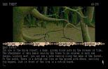 The Pawn Atari ST 17