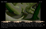 The Pawn Atari ST 19