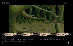 The Pawn Atari ST 21