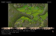 The Pawn Atari ST 22
