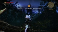 The Witcher 2 PC 07