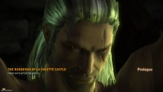 The Witcher 2 PC 13