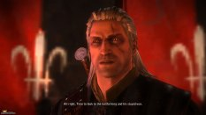 The Witcher 2 PC 18
