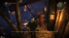 The Witcher 2 PC 25