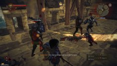 The Witcher 2 PC 42