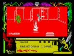 Avalon ZX Spectrum 28