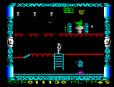 Super Robin Hood ZX Spectrum 20