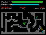 Antics ZX Spectrum 24