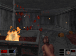 Blood PC 13