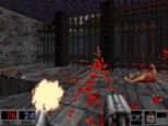 Blood PC 46
