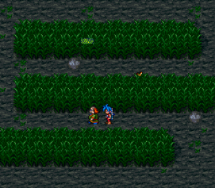 Breath of Fire 2 SNES 023