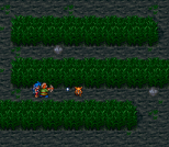 Breath of Fire 2 SNES 039