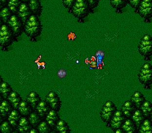 Breath of Fire 2 SNES 045