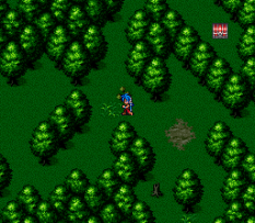 Breath of Fire 2 SNES 099