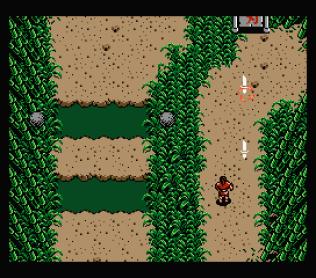 Firebird MSX 10