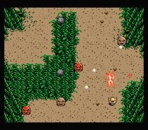 Firebird MSX 16